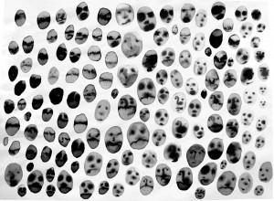 petites-têtes-n°5--30cmx-40