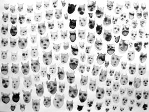 petites-têtes-n°8--30cmx-40